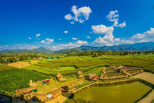 farming utopia